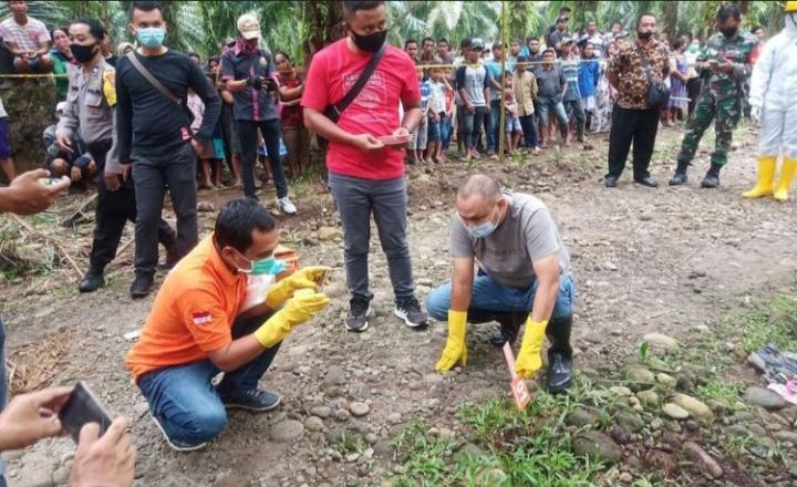 Mayat Wanita Hamil Di Temukan Di Kebun Sawit Medan